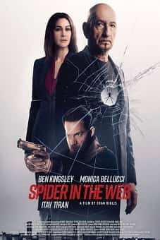 Spider in the Web 2019 download