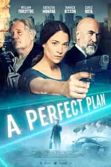 A Perfect Plan 2020 download