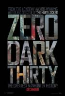 Zero Dark Thirty (2012)  download