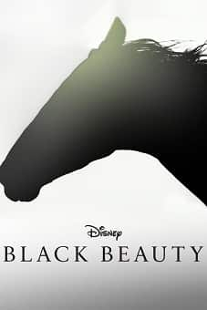 Black Beauty 2020 download