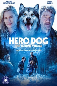 Hero Dog The Journey Home  2021 download